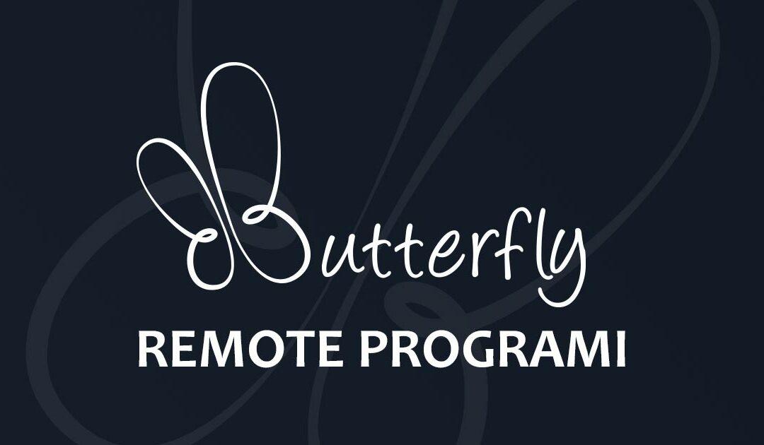 Programi za remote pristup